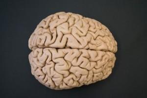 5-partes-del-cuerpo-que-los-cientIficos-pueden-hacer-crecer-en-un-laboratorio-04