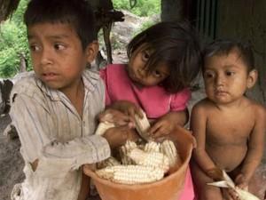 Se estima que al menos 160 mil familias sufren por hambre en Honduras, producto de la sequía.