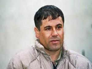 Guzman Chapo