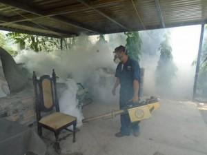 Lufussa Zika