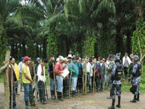 La problemática que viven los campesinos en el Bajo Aguán en la pelea por la tierra parece no interesarle al actual gobierno