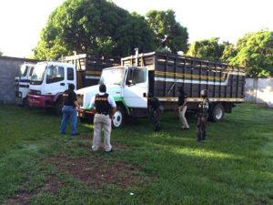 Parte de la flota de vehículos asegurados a Bonilla Banegas