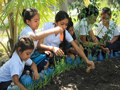 Aldeas indígenas de Honduras vencen al hambre desde las escuelas