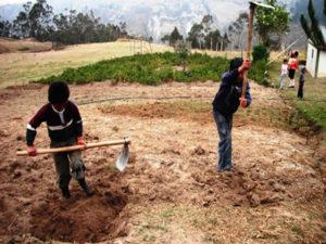 En el area rural es donde mas se da el fenomeno del trabajo infantil