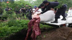 La policía ha decomisado la carne en varios puntos de venta.