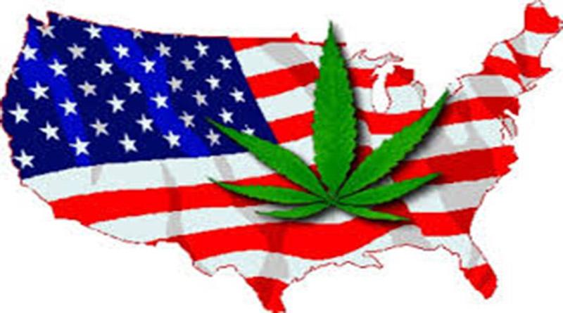 Cinco estados de EE. UU deciden hoy si legalizan marihuana