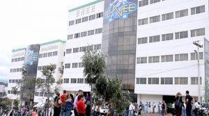 El 51% de las acciones de la ENEE fueron adquiridas por el consorcio honduro-colombiano Empresa Energía Honduras; el 9% por el sindicado y el 40% supuestamente por socios nacionales cuya identidad se desconoce.
