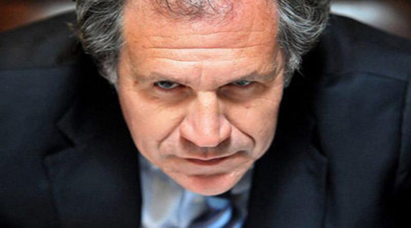 reeligen a Luis Almagro en la OEA