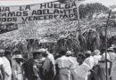MEDARDO MEJIA Y RAFAEL ALBERTY: MÁS DE LA HUELGA DE 1954