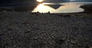 En el Día de la Tierra la ONU alerta calentamiento global sin precedentes