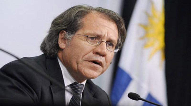 Almagro dice que TSE ha sido irresponsable al dar resultados sin tener informe de la OEA