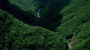 Biosfera San Marcos de Colón, UNESCO patrimonio mundial