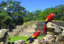 Ley de Fomento al Turismo no debe ser aprobada: ICEFI