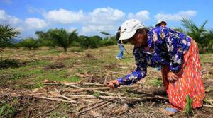 mujeres rurales en Honduras