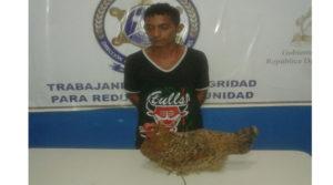 Por robarse una gallina