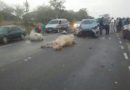 Semovientes provocan accidente en sector de Palmerola, Comayagua