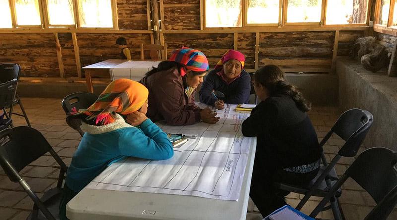 Las Hormigas avanzan en lucha por posicionar agenda de mujeres en planes de gobiernos locales