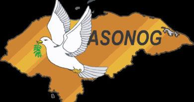 ASONOG se retira de la APJ por estar aliada al gobierno
