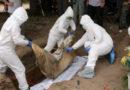Honduras: abrirán fosas comunes y prohíben velatorios para evitar contagios por el Covid-19