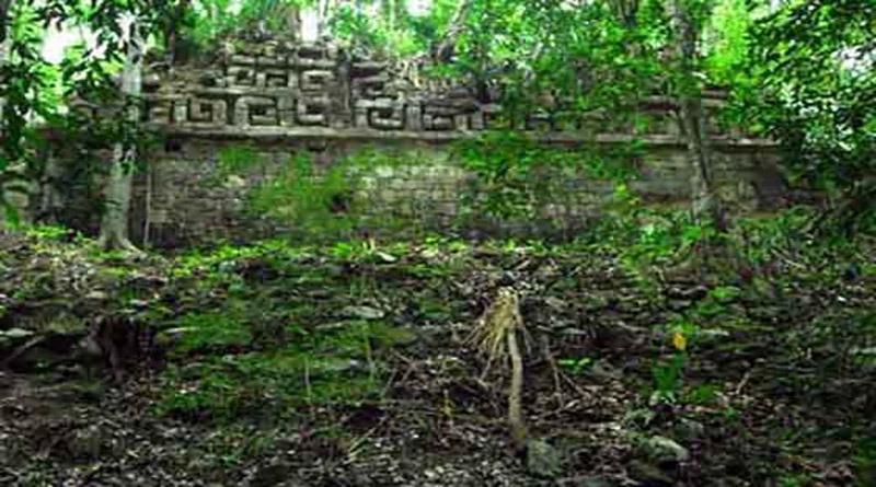 Crean fundación «Kaha Kamasa» para la conservación de la Ciudad Blanca y la Mosquitia hondureña (vídeo)