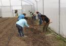 Sistema alimentario mundial va hacia el colapso: FAO