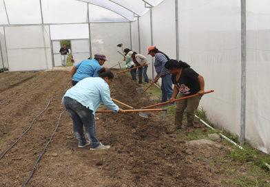De la agricultura al empoderamiento femenino
