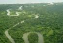 ¿Áreas protegidas en la república mafiosa de Honduras?