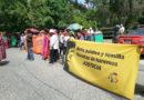Suspenden juicio de asesinato de Berta Cáceres por violaciones al debido proceso