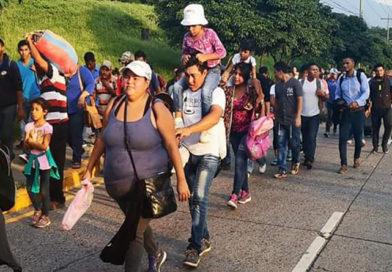 ONGs de C.A México y el Caribe rechazan posible acuerdo migratorio de Honduras con EE.U