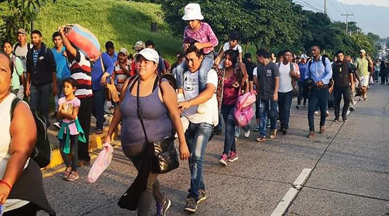 ONGs de C.A México y el Caribe
