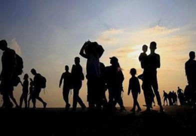 EE.UU, México y Centroamérica fallan en su obligación de proteger a los y las migrantes