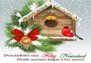 Mensaje de Navidad y Año Nuevo