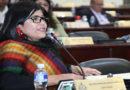 Diputada presenta proyecto de ley para sancionar a hondureños que no ejerzan el sufragio
