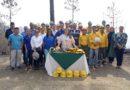 Grupo Terra e ICF se unen para proteger los bosques