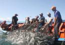 Persisten atropellos a la pesca artesanal en Roatán
