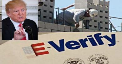 Gobierno de Trump podría incluir verificación obligatoria de permisos laborales para inmigrantes
