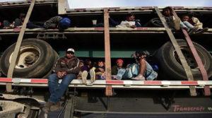 Detienen a 791 migrantes