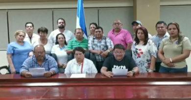 Ante OACNUDH, Plataforma denuncia violaciones a los derechos humanos en Honduras
