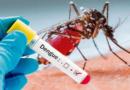 El dengue, enemigo oculto en la alarma del covid-19