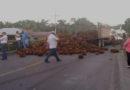 Productores de palma africana se toman carretera CA-13