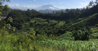 Copinh denuncia ataque a comunidad de Río Blanco con destrucción de cosechas