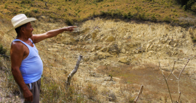 Presentan propuesta para superar la crisis agraria, alimentaria y ambiental en Honduras