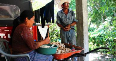 Campesinos de Honduras viven en riesgo alimentario
