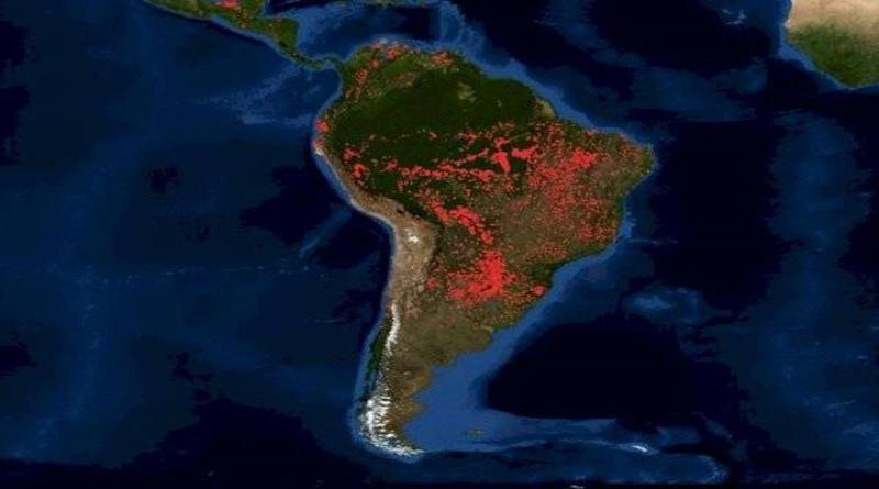 Incendio de grandes proporciones consume selva amazónica