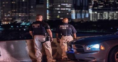 ICE contempla 238 mil deportaciones para el 2020
