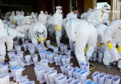 OMS alerta que pandemia podría matar a 80 millones de personas en el mundo