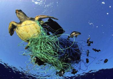 640.000 toneladas de redes de pesca abandonadas 'estrangulan' la fauna de los océanos