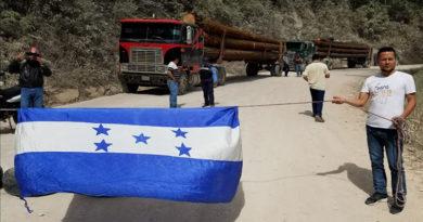 Pobladores de Marcala logran suspender tala de madera en microcuenca hidrográfica