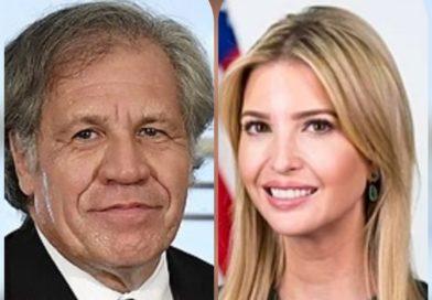 Convergencia Contra el Continuismo condena visita de Ivanka Trump y Luis Almagro a Honduras