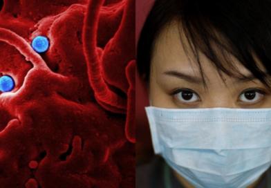 Confirman llegada de coronavirus a México